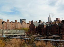 high line in new york