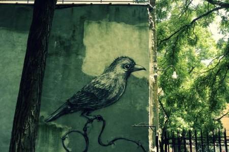 grafiti-tour-new-yotk-city