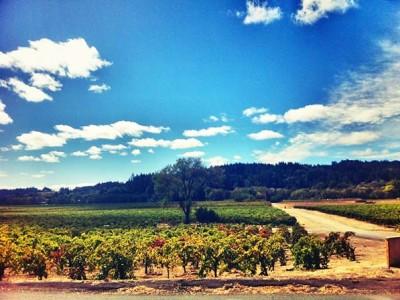road-trip-california-sonoma