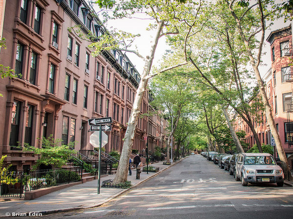 Brooklyn hotspots