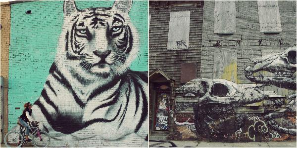 Graffiti Williamsburg and Bushwick NYC