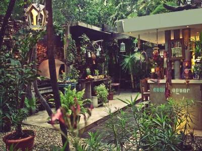 Casa Jaguar Tulum Mexico Garden