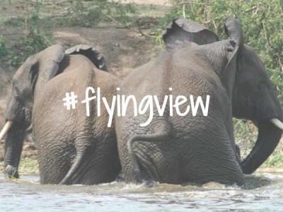 Flyingview