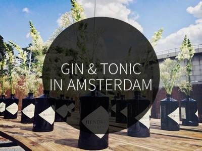 gin & tonic in amsterdam