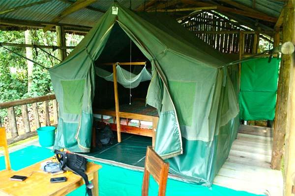 buhoma-restcamp-uganda-gorilla