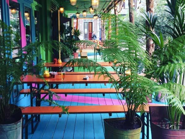 © de Tulp, Amsterdam - leukste bars en cafes amstedam