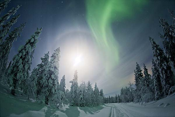 Northern Lights Lapland