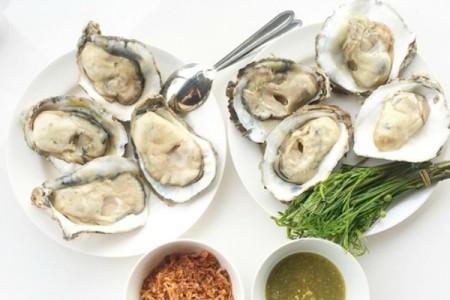 neptune-oysters-boston