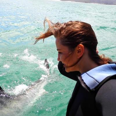 witte haaien duiken