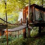 boomhuis - mooiste airbnb's