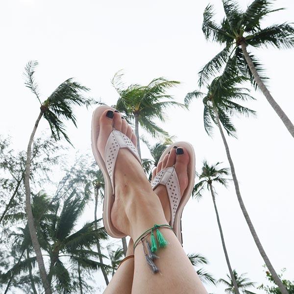 toffel palmboom nikkie beach