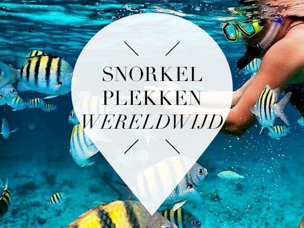 Snorkel plekken wereldwijd