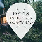 hotels in het bos