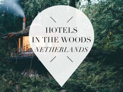 hotels in the woods