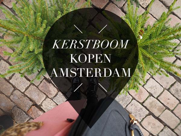 9 X Kerstboom Kopen In Amsterdam Your Little Black Book