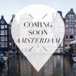 coming soon amsterdam pointer november