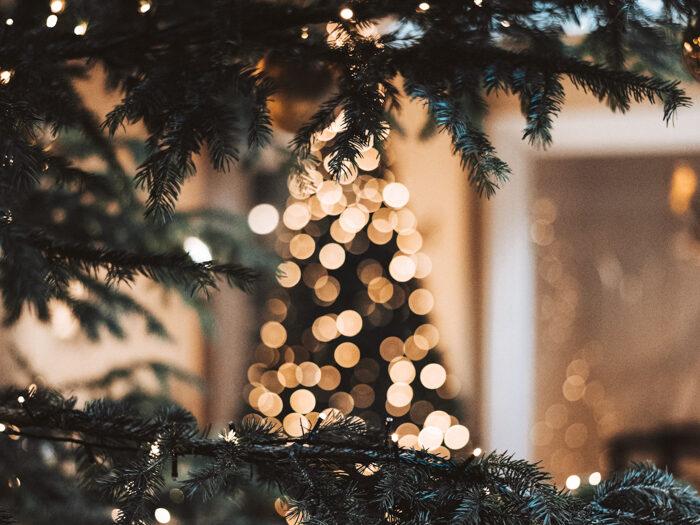 kerstboom kopen amsterdam