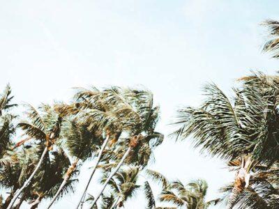 doen bij orkaan, cyclone, tropische storm, tyfoon