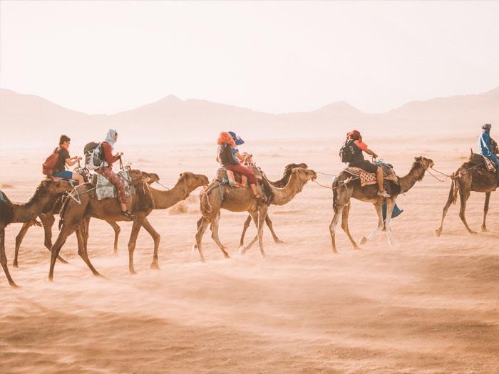 glamping in de sahara