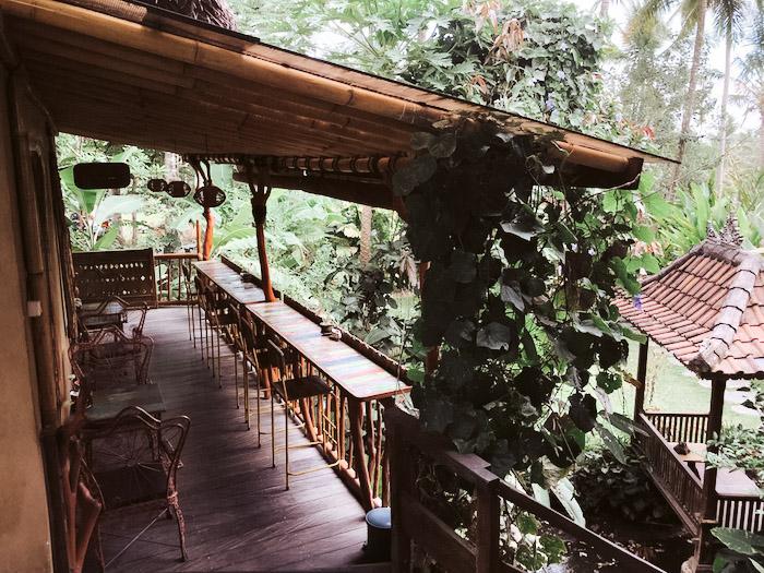 Dragonfly-Bali