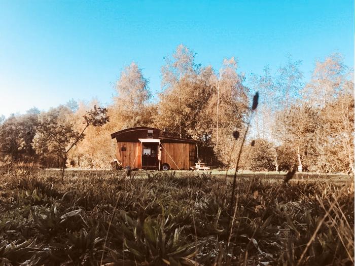 Vakantiehuisjes Drenthe Mantinge