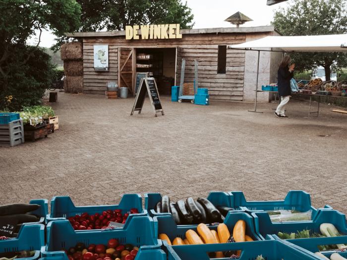 Boerderij winkels hoeve Biesland