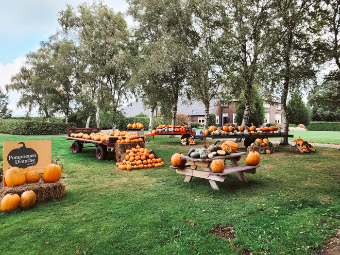 pompoenboerderijen in Nederland
